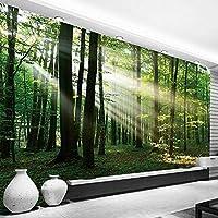 カスタム3D写真壁紙森日光緑の森壁画寝室リビングルームソファテレビ背景壁画3D-300x210cm