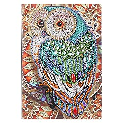 DIY Owl Rarembellish Shaped Diamond Painting Drawing Notebook