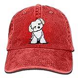 Cute Maltese Puppy Dog.PNG Gorra de béisbol Unisex Impreso Ajustable SP Back Hat Red Red 26693