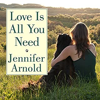 Love Is All You Need audiobook cover art