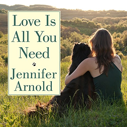 Love Is All You Need cover art