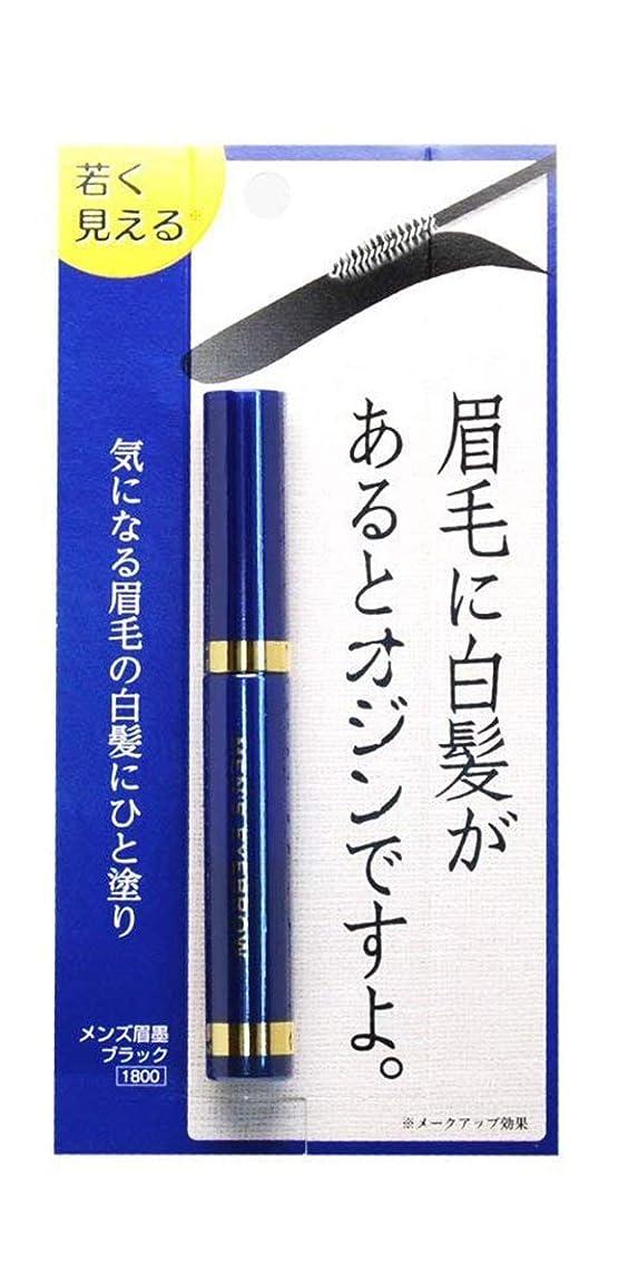 コンテスト浸漬競うビナ薬粧 メンズ眉墨 2個セット
