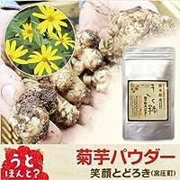 熊本県産 きく糖 菊芋粉末パウダー 2袋(80g×2)セット 【 国産 九州 熊本 菊芋 キクイモ 】