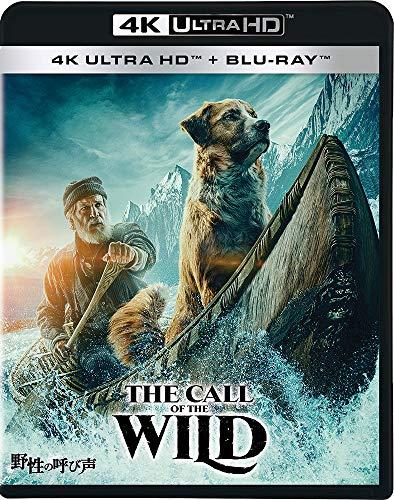 野性の呼び声 4K UHD [4K ULTRA HD+ブルーレイ] [Blu-ray]