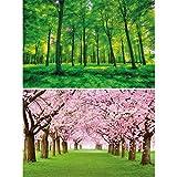 GREAT ART Set di 2 Poster XXL – Alberi della Foresta – Foresta Verde e viale con Fiori di ciliegio Carta da Parati Foto Natura Primavera Estate Fiori Paesaggio Poster (140 x 100 cm)