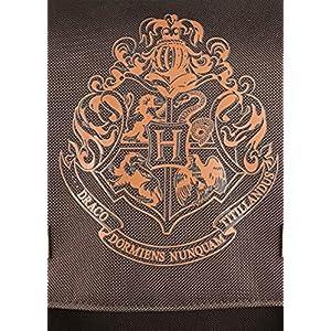 61vJoz0mSZL. SS300  - HARRY POTTER GR91794, Mochila Flap Hogwarts Over, Unisex, Multi, talla única