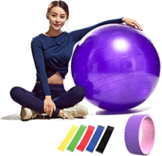 Yoga Fitness Ball Exercise Gym Ball 65cm Diameter Anti Burst and Anti Slip with Yoga Wheel 4D Massage and 5pcs Exercise Re...