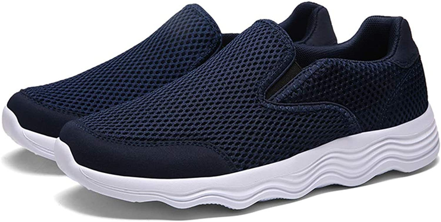 Sneakers HAIZHEN, Men's shoes, Spring Mesh Breathable shoes, Low-top shoes, Sports and Leisure shoes