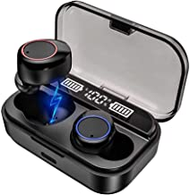 dual earbuds with charging case
