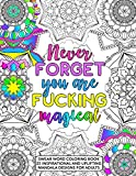 Never Forget You Are Fucking Magical: Swear Word Coloring Book - 25 Inspirational, and Uplifting Intricate Geometric Mandala Designs for Adults - ... Relaxation for Women and Men - Size 8.5x11