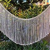 Dowarm 0.5 Yard Crystal Rhinestone Fringe Trim Silver Long Tassel Fringe Chain Trim Diamond White Crystal Chain Trim for Crafts Clothes Bridal Bouquet Embellishments (Crystal Clear, 16CM Tassel)