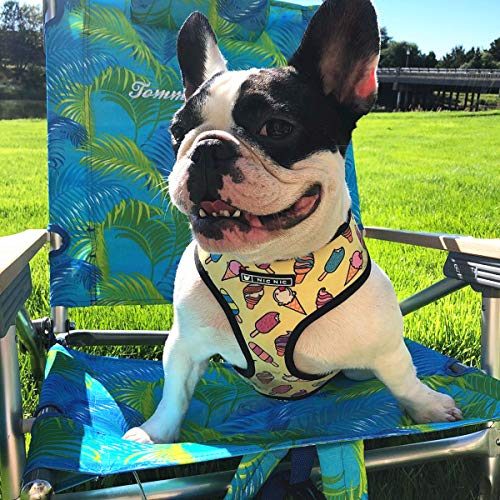 4 collares de perro estilo para perros pequeños y medianos, arnés ajustable para perro, correa suave para perro, correa de perro para cachorros al aire libre con asa (helado, XL)