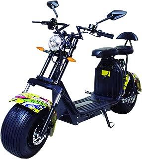 Amazon.es: citycoco - Motos, accesorios y piezas: Coche y moto