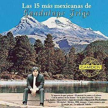 Las 15 Mas Mexicanas De Guadalupe Trigo