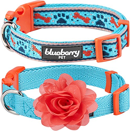 Blueberry Pet Pack of 2 Multiple Designs Mix and Match Sky Blue Dog Collar for Puppies & Small Dogs with Detachable Orange Flower Accessory, S, Neck 12'-16'