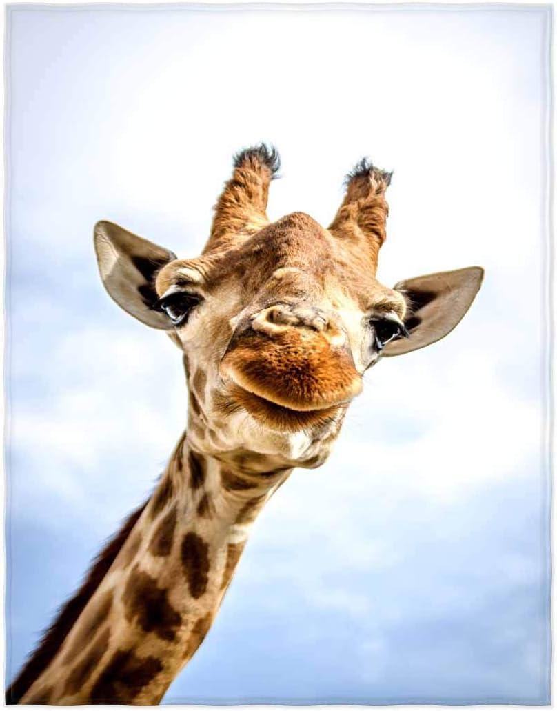 QH 58x80 latest Inch Giraffe New product!! Sky Print Super Blanket for Throw Soft B