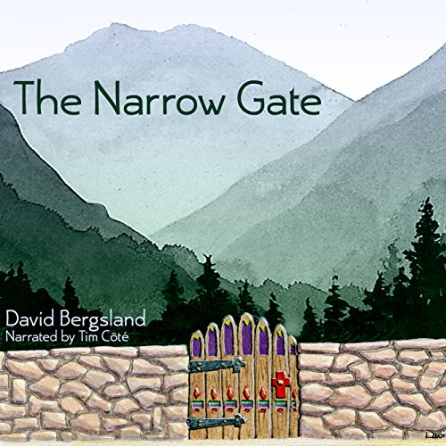 The Narrow Gate audiobook cover art
