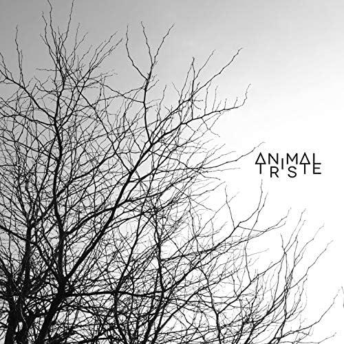 Animal Triste