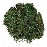 Decoración de plantas artificiales Sodial(R), musgo verde