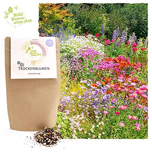 Trockenblumen Samen-Mix für viele...
