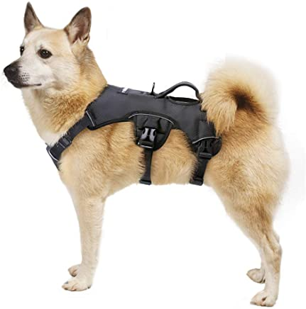 Rabbitgoo Dog Harness with Lifting Handle for Large Dog Outdoor Training