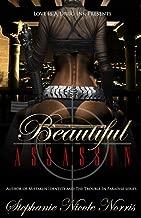 Beautiful Assassin (Destiny Awaits Book 1)