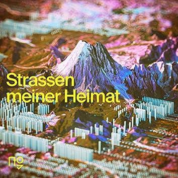 Strassen meiner Heimat (feat. Dominic Sanz)