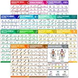 [14-PACK] Laminated Large Workout Poster Set - Perfect Workout Posters For Home Gym - Exercise Charts Incl. Dumbbell, Yoga Poses, Resistance Band, Kettlebell, Stretching & More Fitness Gym Posters