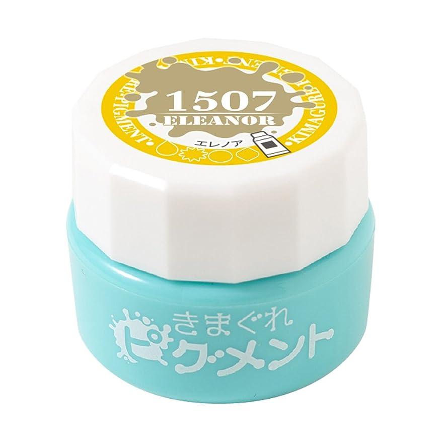 に慣れ甲虫正気Bettygel きまぐれピグメント エレノア QYJ-1507 4g UV/LED対応