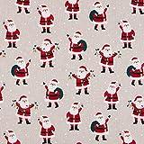 Hans-Textil-Shop Stoff Meterware Weihnachtsmann - Winter,