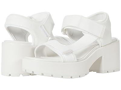Vagabond Shoemakers Dioon