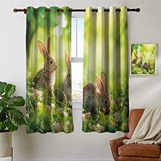 Youdeem-tablecloth Animal Hot Stamping Stitched Swirl Pattern Funny Fluffy Rabbits Bunny Family on Daisies Grass Easter Meadow Fresh Image Curtain Panels for Bedroom W55 x L45 Inch Green and Tan