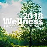 Wellness CD Entspannung Panflöte 2018