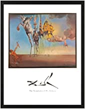 The Temptations of St. Anthony by Salvador Dali 8x10 Art Print (Framed in 1
