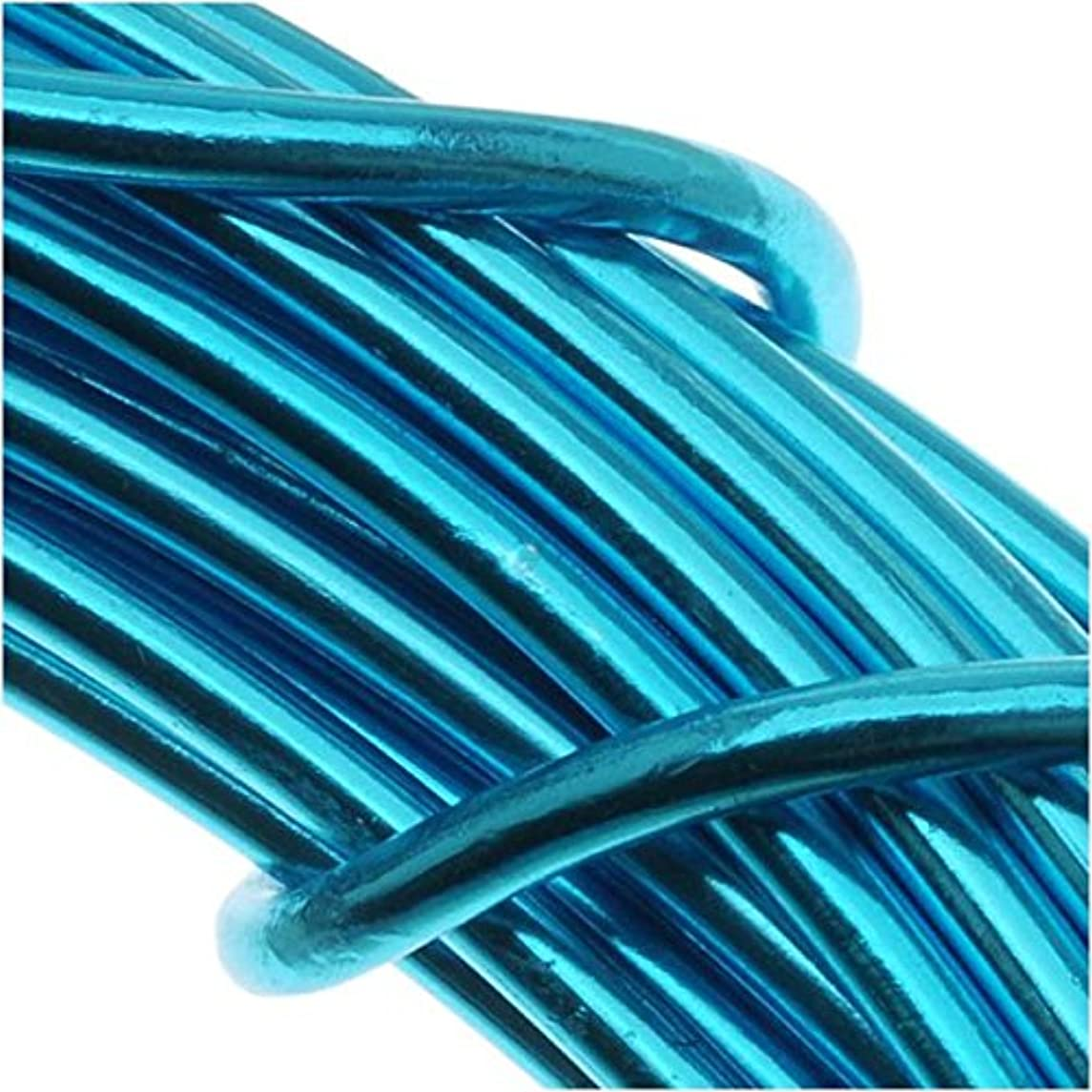 Beadsmith WCR-4117 11.8m 12 Gauge Aluminum Craft Wire, Turquoise, 39'