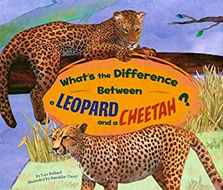 What's the Difference Between a Leopard and a Cheetah?
