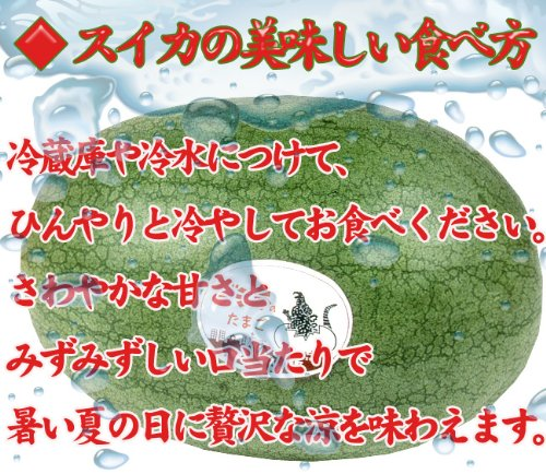 ゴジラのたまご秀品(3L×1玉)檻型木箱入月形町特産楕円形スイカ