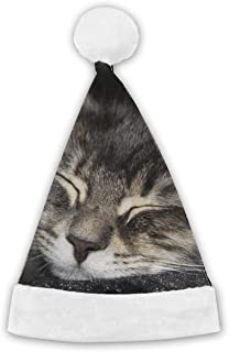 Christmas Caps Animals Cat Tabby S Dream Face Close1 Xmas Santa Hat Christmas Hats for Adults and Kids