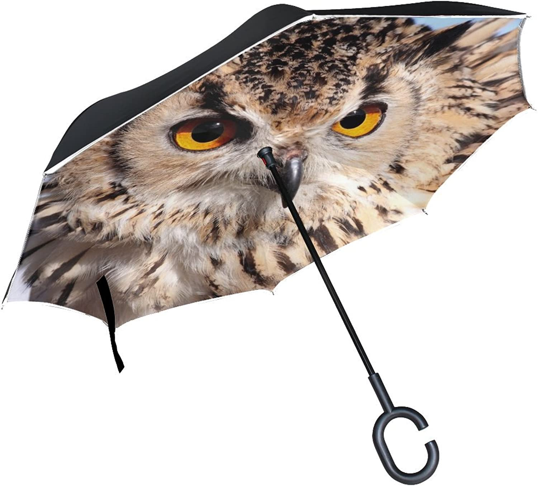 Animal Owl Screech Nature Landscape Stunning Scary Animated Adorable Ingreened Umbrella Large Double Layer Outdoor Rain Sun Car Reversible Umbrella