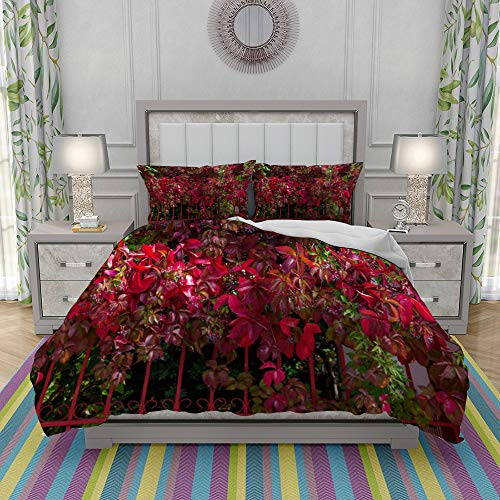 REIOIYE Duvet Cover Set-Bedding,Red Foliage On The Fence Natural Background Bright Sunny Day In Greece,Quilt Cover Bedlinen-Microfibre 200x200cm with 2 Pillowcase 50x80cm