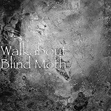 Blind Moth
