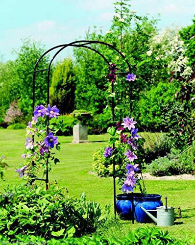 garden mile 2.4m Metal Garden Arch Trailing Claiming Plants Roses Outdoor Archway Arbour Decorative Heavy Duty Strong Stable