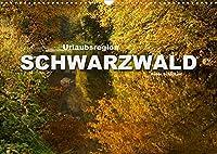 Urlaubsregion Schwarzwald (Wandkalender 2022 DIN A3 quer): Die sehenswerte Ferienregion Schwarzwald in einem Kalender vom Reisefotografen Peter Schickert. (Monatskalender, 14 Seiten )