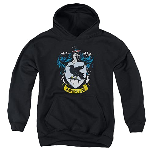 45d569127d3 Harry Potter Ravenclaw Crest Youth Pull Over Hoodie Black