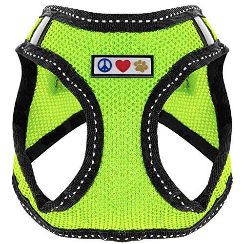 Pawtitas Pet Reflective Mesh Dog Harness, Step in or Vest Harness, Comfort Control, Training Walking of Your Puppy/Dog XS Extra Small Green Dog Harness