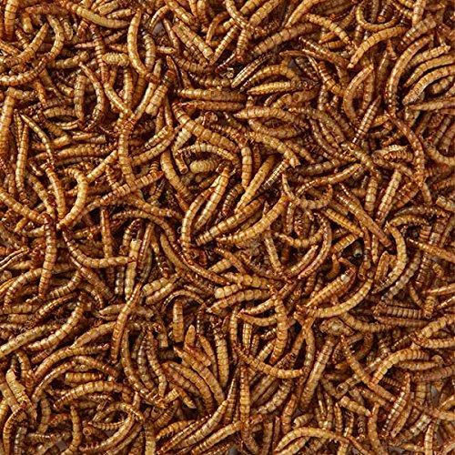 10 kg de vers de farine séchés pour les oiseaux et les poules