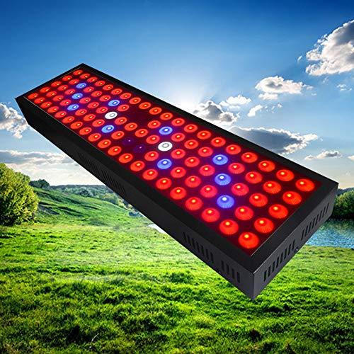 300W Timed Betriebslampe Full Spectrum Indoor Sukkulenten hydroponische Sämling Blüte,300W