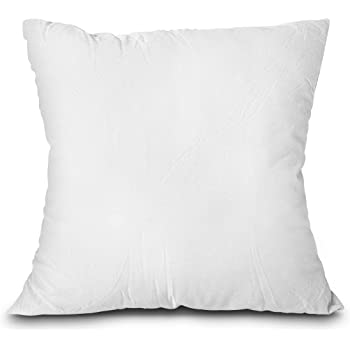 EDOW Throw Pillow Insert, LightweightSoft Polyester Down Alternative Decorative Pillow, Sham Stuffer, Machine Washable. (White, 18x18)