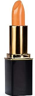 L'Paige L25 Dusty Rose Designer Lipstick, All-Natural, AloeVera, Long-lasting Moisturizing