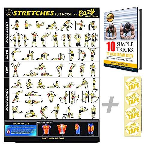 Eazy How To Stretch Poster, Übungen, Workout, groß, 51 x 73 cm, Erhöhung der Flexibilität, Lockerung der Muskeln, Verhinderung von Verletzungen, Tabelle für Fitness Zuhause